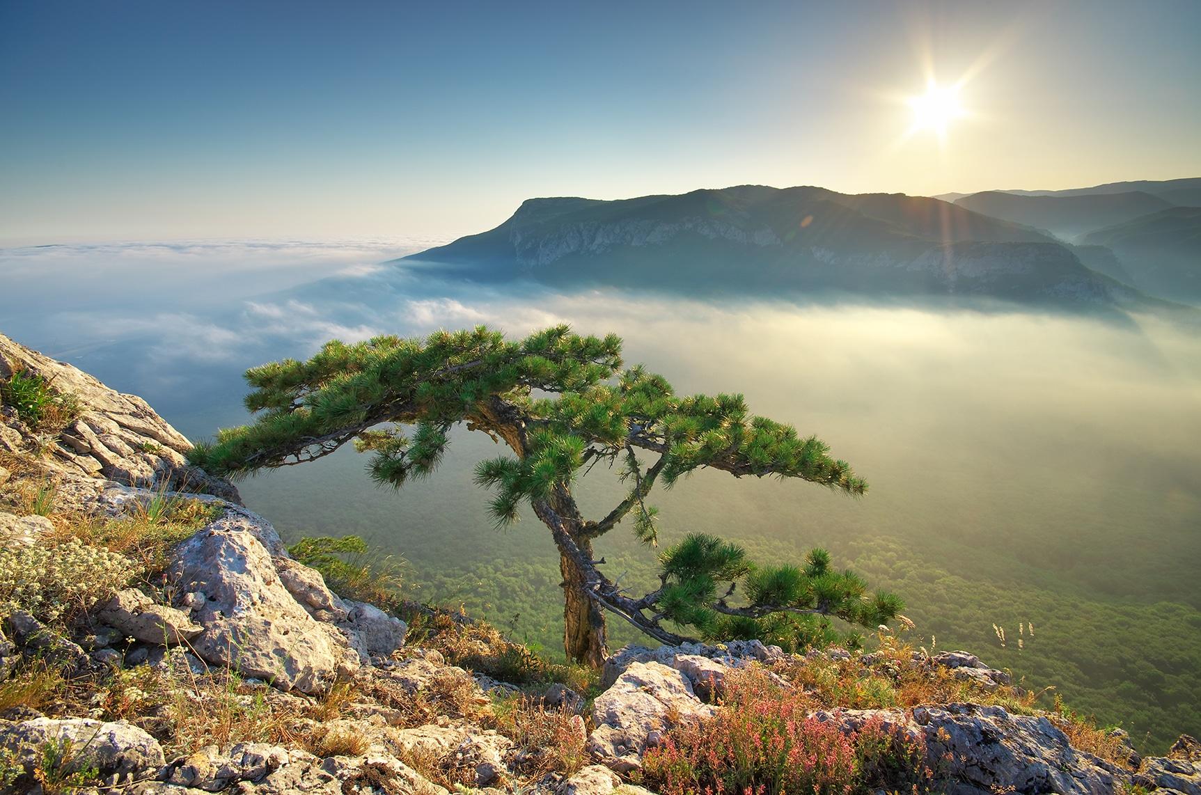 Inspirational Mountain Scene